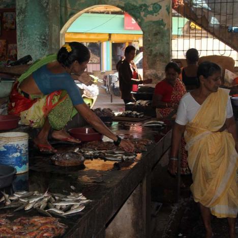 Fischmarkt Chaudi